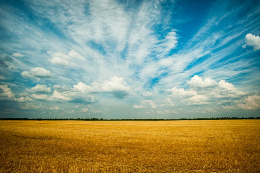 agriculture-blue-sky-cloudsss