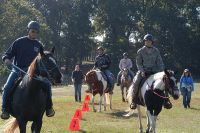 800px-US_Army_52806_Horse_therapy_gallops_toward_helpful_transitions