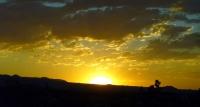 Actual_Sunset