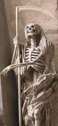 CathedralOfTrier_Skeleton