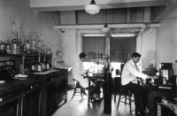 Chemical_laboratory_at_the_central_cancer_research_labs