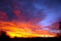 Flying_Blue_Sunrise