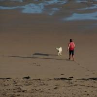 Walking_the_Dog_-_geograph.org_.uk_-_1563377